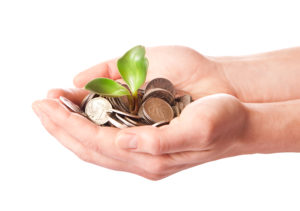 Zonky – zkušenosti s půjčkou